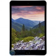 Apple iPad mini 3 4G 16Gb Space Gray (A1600)