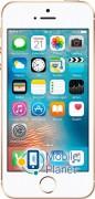 Apple iPhone SE 16Gb Gold (MLXM2)
