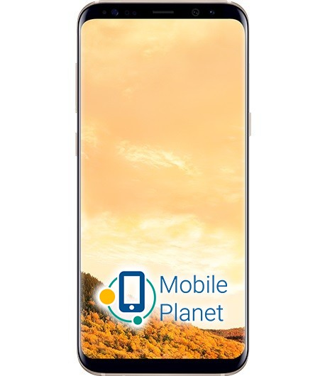 Samsung-Galaxy-S8-Plus-Duos-G955-Gol-27567.jpg