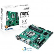 ASUS PRIME B250M-C