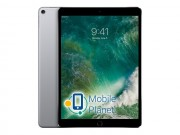 Apple iPad Pro 12.9 2017 Wi-Fi + Cellular 256GB Space Grey (MPA42)