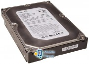HDD SATA 750GB Seagate Barracuda ES 7200rpm 16MB (ST3750640NS)