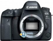 Canon EOS 6D MKII (Body) (1897C031)