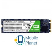 M.2 2280 120GB Western Digital (WDS120G2G0B)
