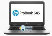 HP ProBook 645 G3 (1BS13UT)