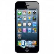 Apple iPod touch 5Gen 64GB Black (MD724)